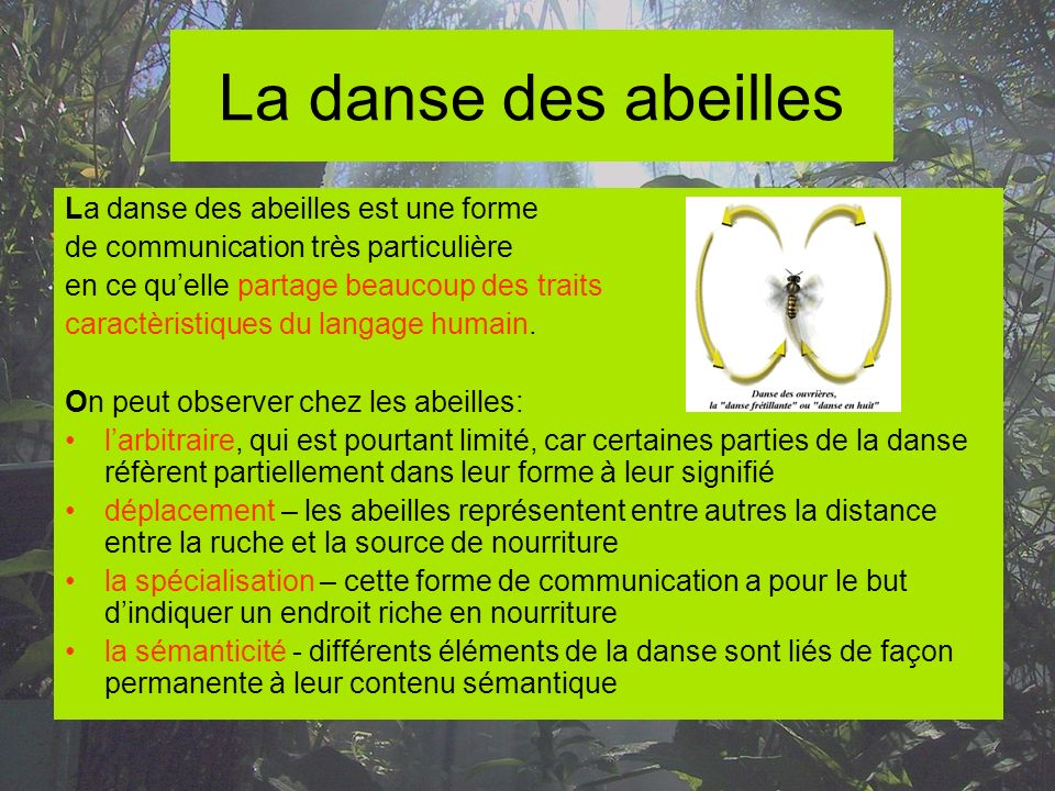 La danse des abeilles La danse des abeilles est une forme