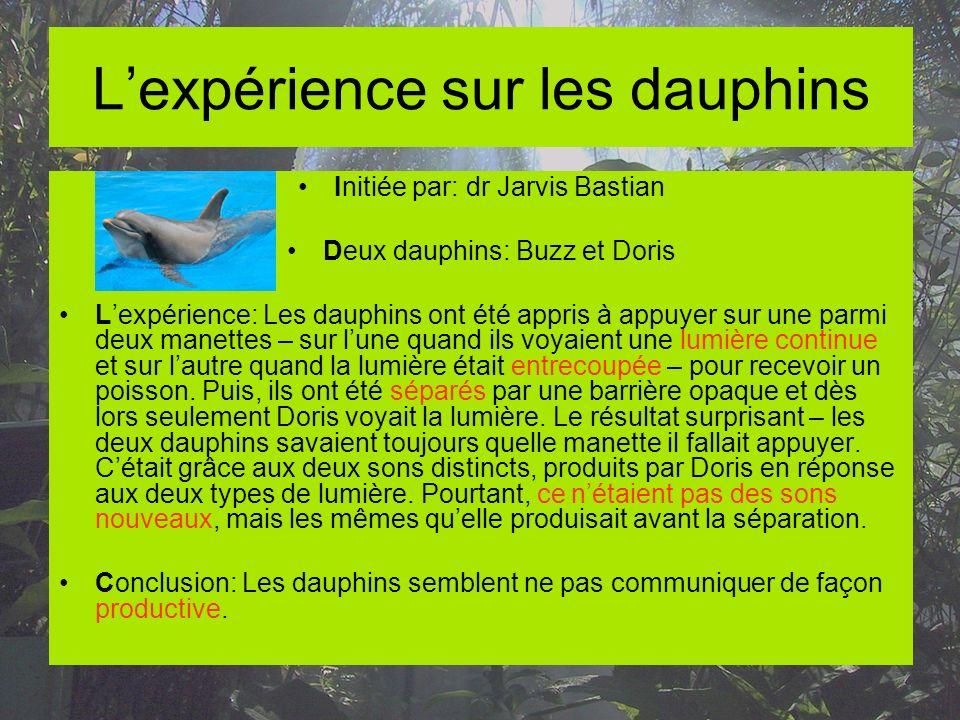 L'expérience sur les dauphins