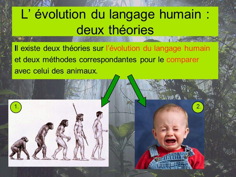 L' évolution du langage humain : deux théories