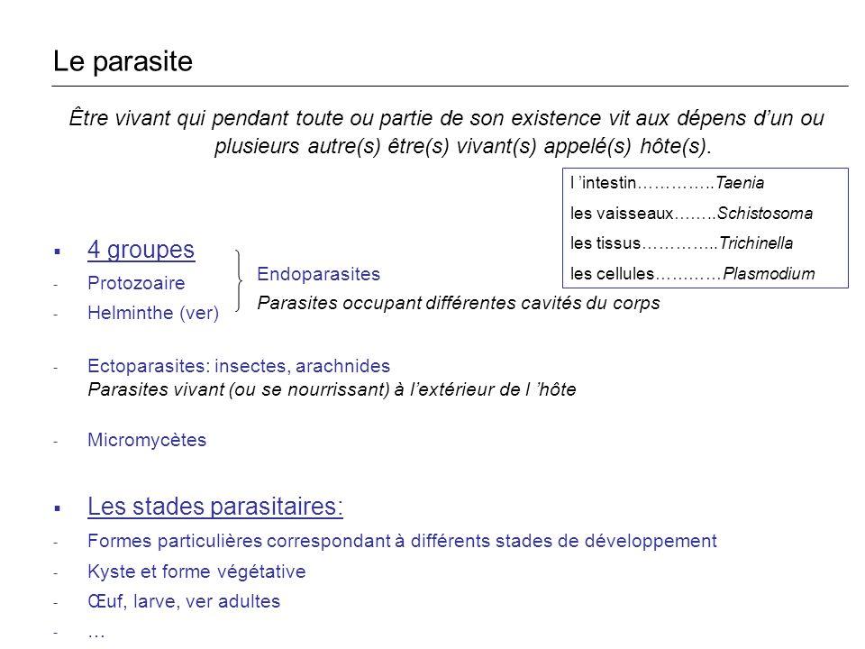 Le parasite 4 groupes Les stades parasitaires: