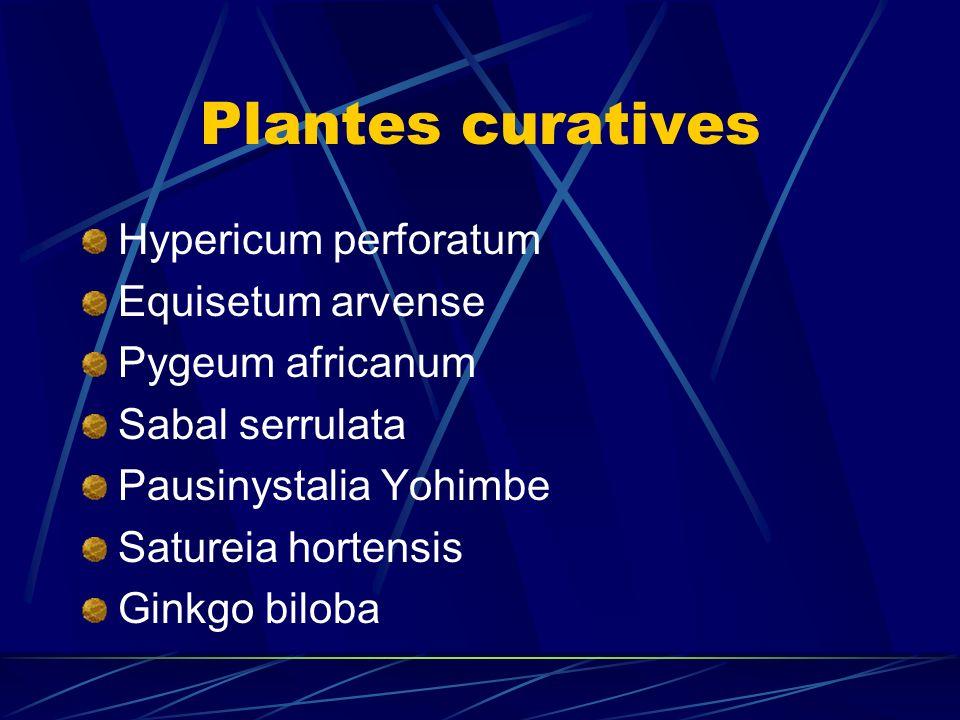 Plantes curatives Hypericum perforatum Equisetum arvense
