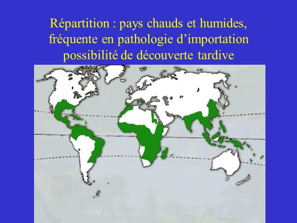 Répartition : pays chauds et humides, fréquente en pathologie d'importation possibilité de découverte tardive