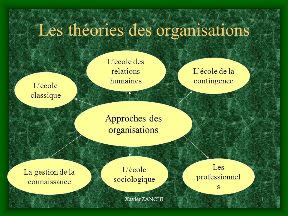 Les théories des organisations