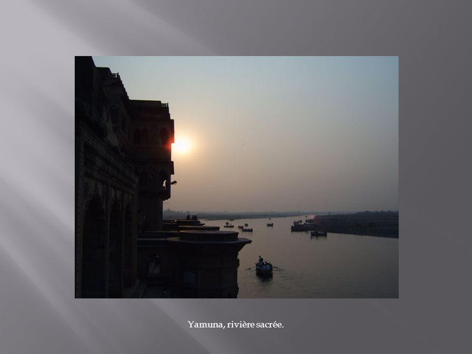 Yamuna, rivière sacrée.