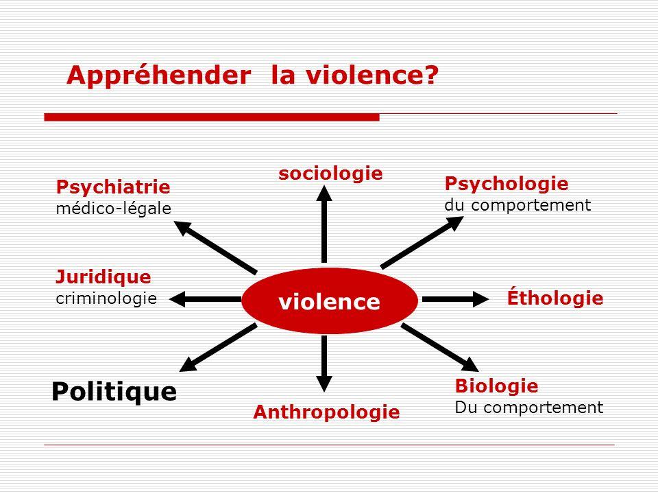 Appréhender la violence