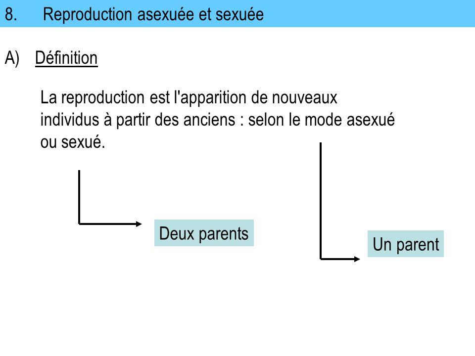 8. Reproduction asexuée et sexuée