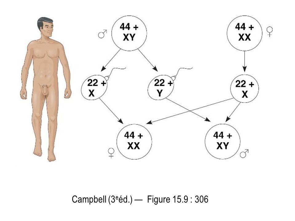 Campbell (3eéd.) — Figure 15.9 : 306