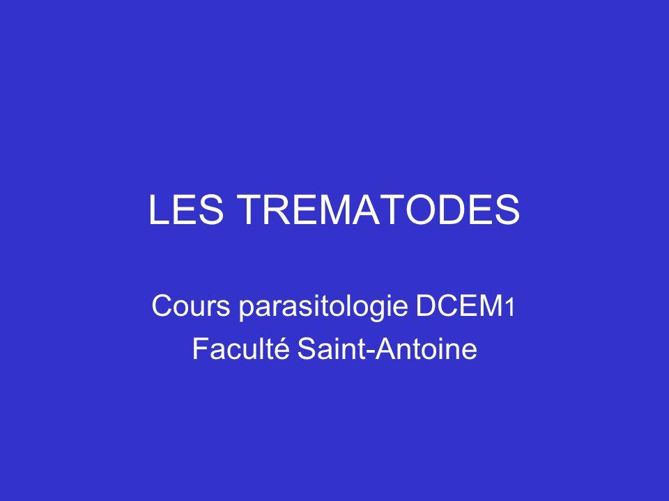 Cours parasitologie DCEM1 Faculté Saint-Antoine