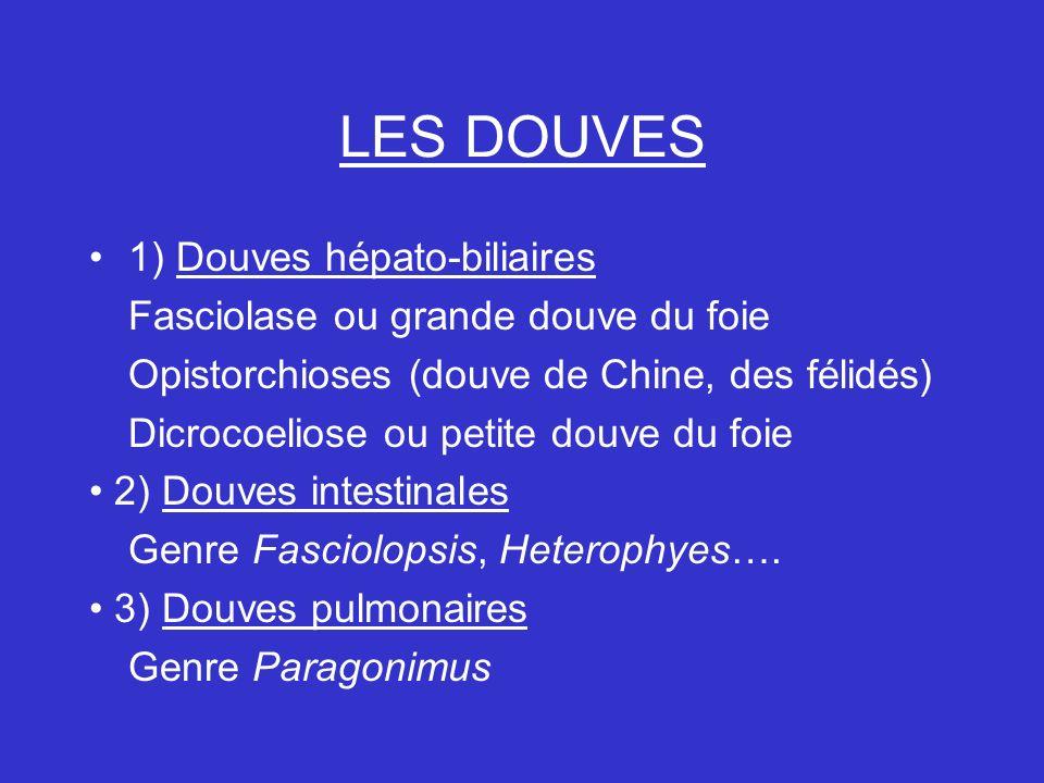 LES DOUVES 1) Douves hépato-biliaires