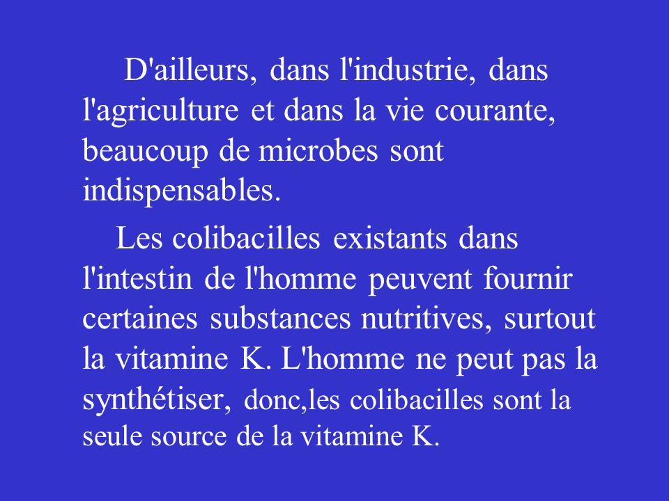 D ailleurs, dans l industrie, dans l agriculture et dans la vie courante, beaucoup de microbes sont indispensables.