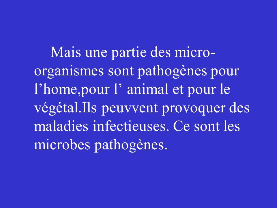 Mais une partie des micro-organismes sont pathogènes pour l'home,pour l' animal et pour le végétal.Ils peuvvent provoquer des maladies infectieuses.
