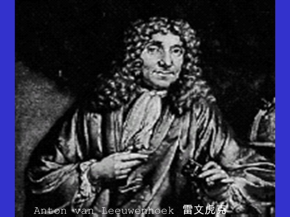 Anton van Leeuwenhoek 雷文虎克