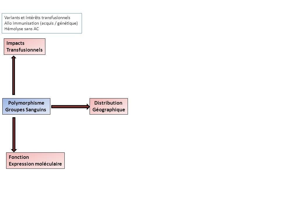 Polymorphisme Groupes Sanguins Distribution Géographique