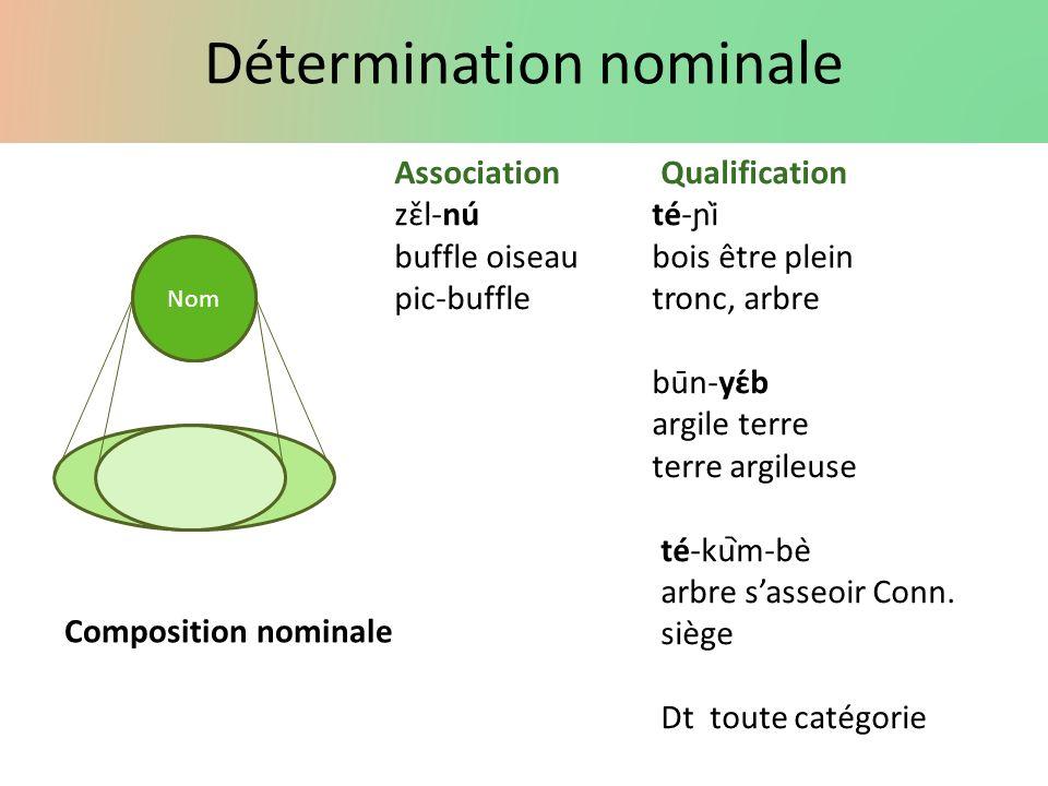 Détermination nominale