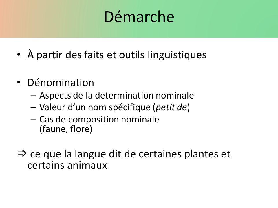 Démarche À partir des faits et outils linguistiques Dénomination