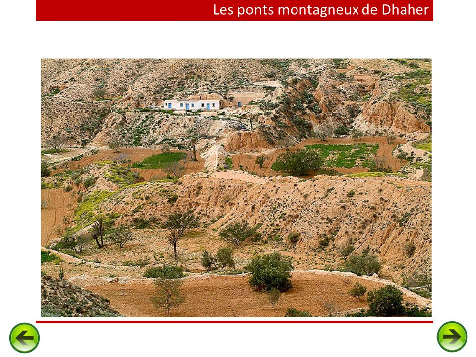 Les ponts montagneux de Dhaher