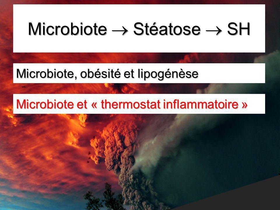 Microbiote  Stéatose  SH