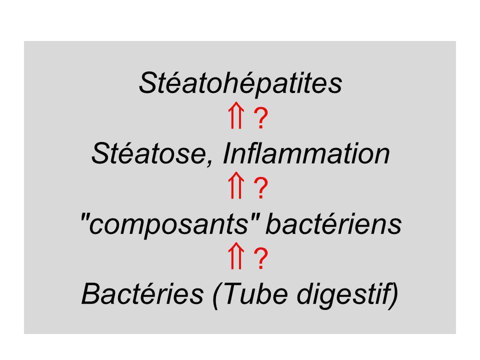Stéatohépatites . Stéatose, Inflammation . composants bactériens 