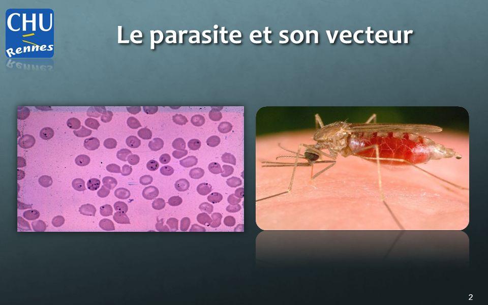 Le parasite et son vecteur