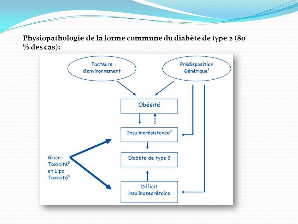 Physiopathologie de la forme commune du diabète de type 2 (80