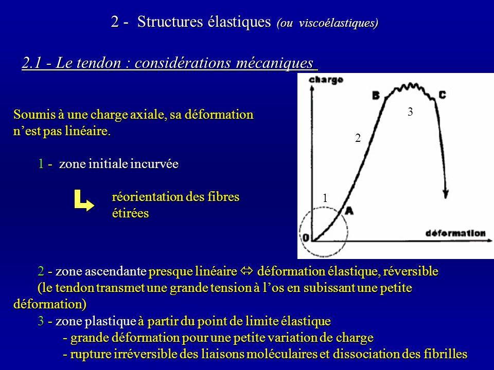 2 - Structures élastiques (ou viscoélastiques)