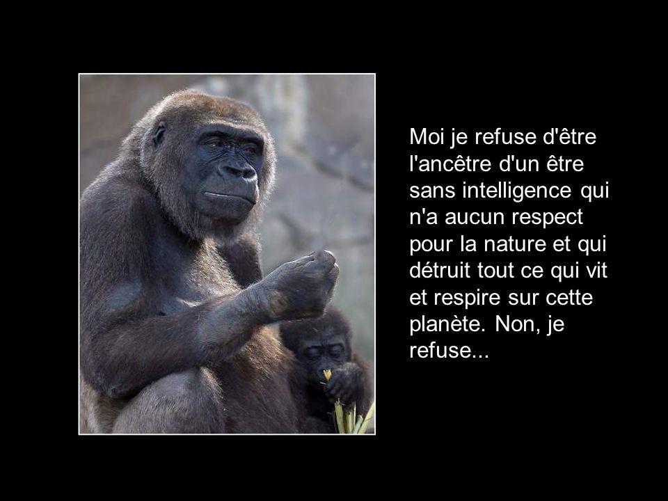 Moi je refuse d être l ancêtre d un être sans intelligence qui n a aucun respect pour la nature et qui détruit tout ce qui vit et respire sur cette planète.