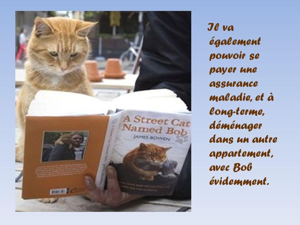 bob et james ou l 39 histoire d 39 un chat et d 39 un homme qui se sont sauv la vie click ppt video. Black Bedroom Furniture Sets. Home Design Ideas