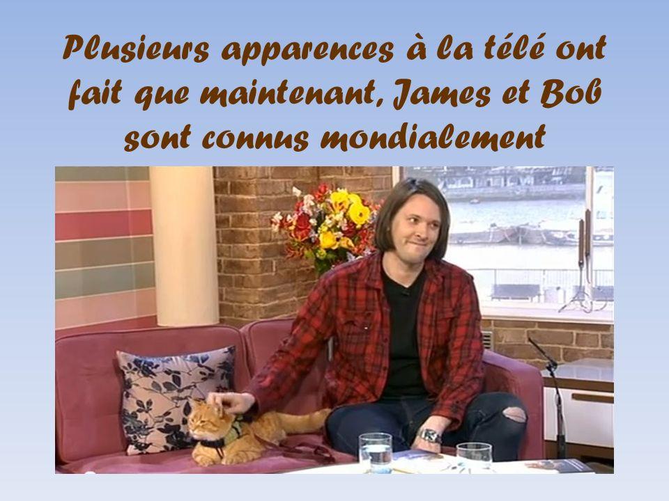 Plusieurs apparences à la télé ont fait que maintenant, James et Bob sont connus mondialement