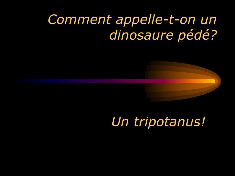 Comment appelle-t-on un dinosaure pédé
