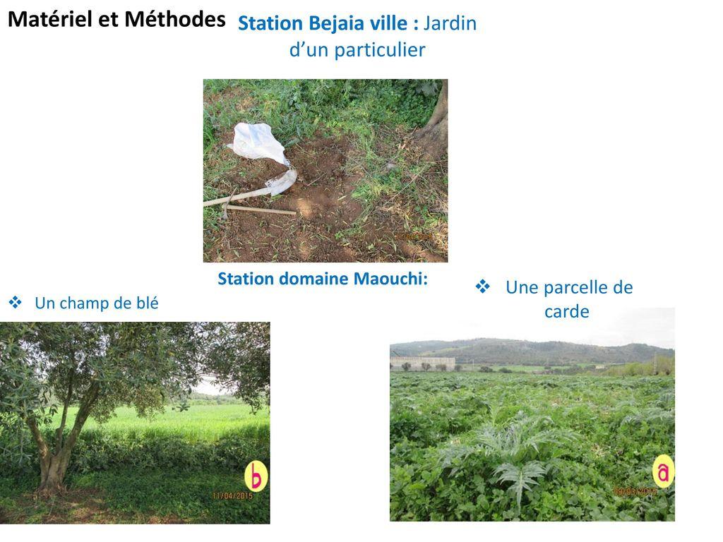 Universit de b jaia facult des sciences de la nature et - Location materiel jardin entre particulier ...