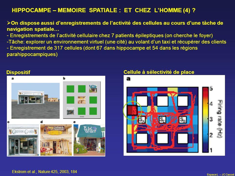 HIPPOCAMPE – MEMOIRE SPATIALE : ET CHEZ L'HOMME (4)