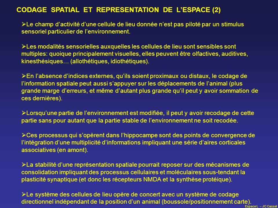CODAGE SPATIAL ET REPRESENTATION DE L'ESPACE (2)