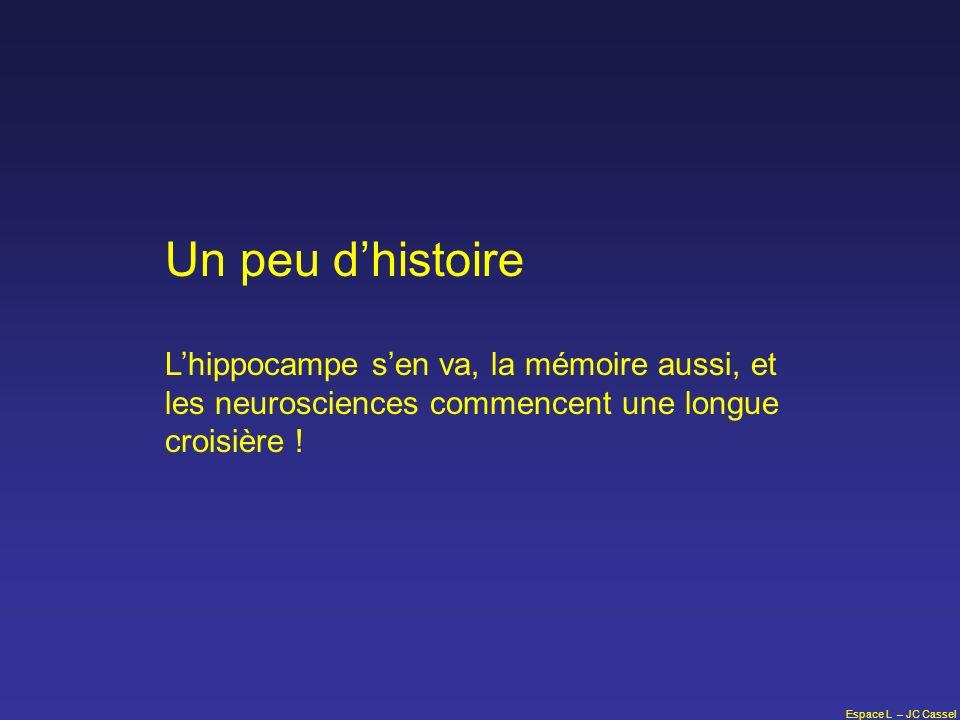 Un peu d'histoire L'hippocampe s'en va, la mémoire aussi, et les neurosciences commencent une longue croisière !