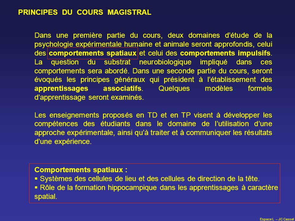 PRINCIPES DU COURS MAGISTRAL