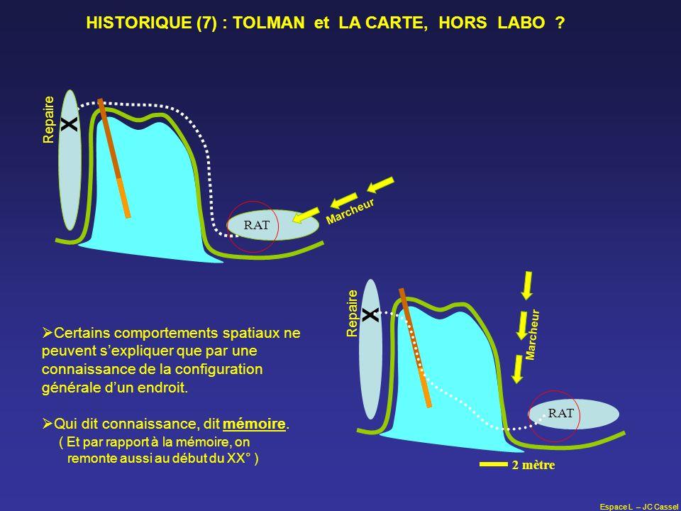 X X HISTORIQUE (7) : TOLMAN et LA CARTE, HORS LABO
