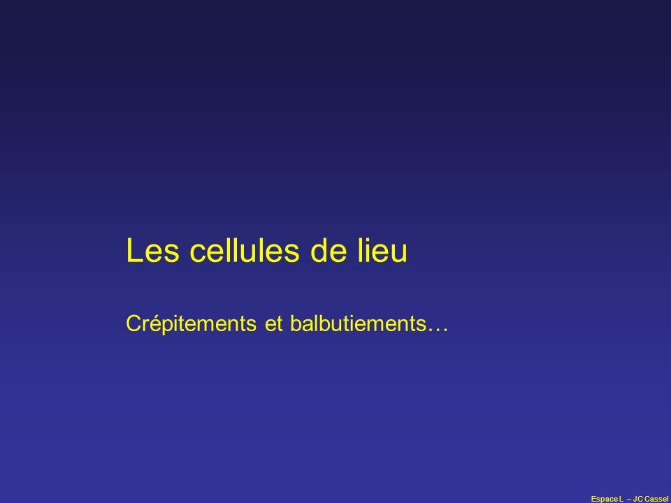 Les cellules de lieu Crépitements et balbutiements…