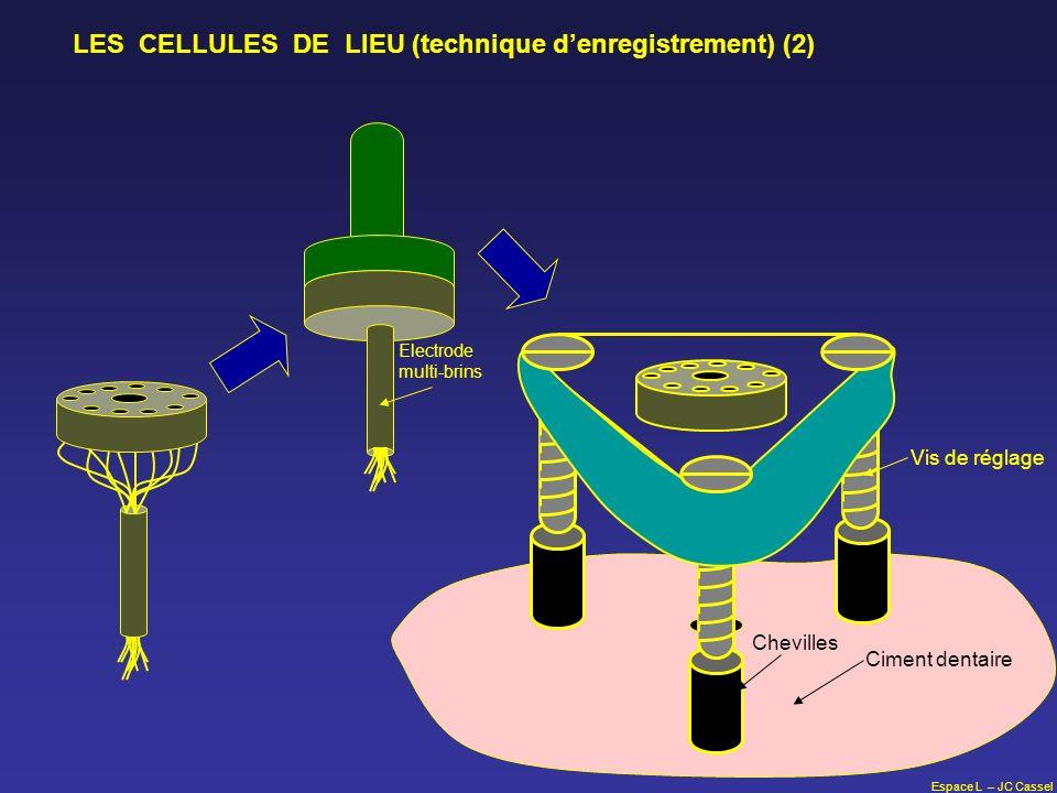LES CELLULES DE LIEU (technique d'enregistrement) (2)