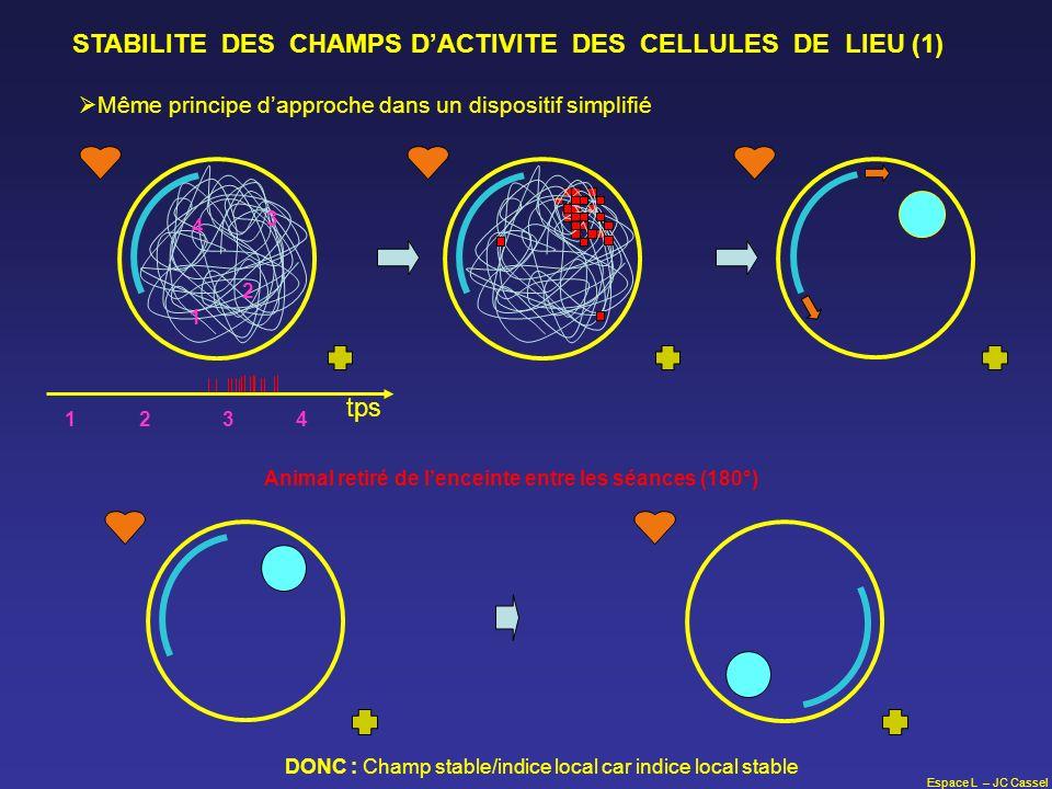 STABILITE DES CHAMPS D'ACTIVITE DES CELLULES DE LIEU (1)