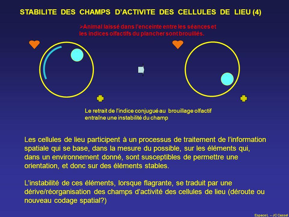 STABILITE DES CHAMPS D'ACTIVITE DES CELLULES DE LIEU (4)