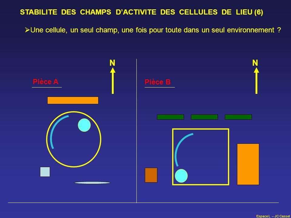 N N STABILITE DES CHAMPS D'ACTIVITE DES CELLULES DE LIEU (6)