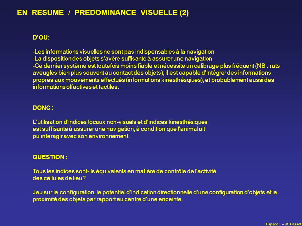 EN RESUME / PREDOMINANCE VISUELLE (2)