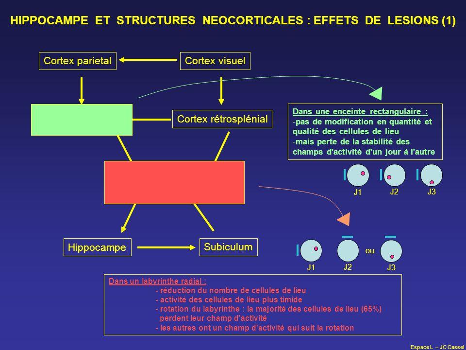 HIPPOCAMPE ET STRUCTURES NEOCORTICALES : EFFETS DE LESIONS (1)