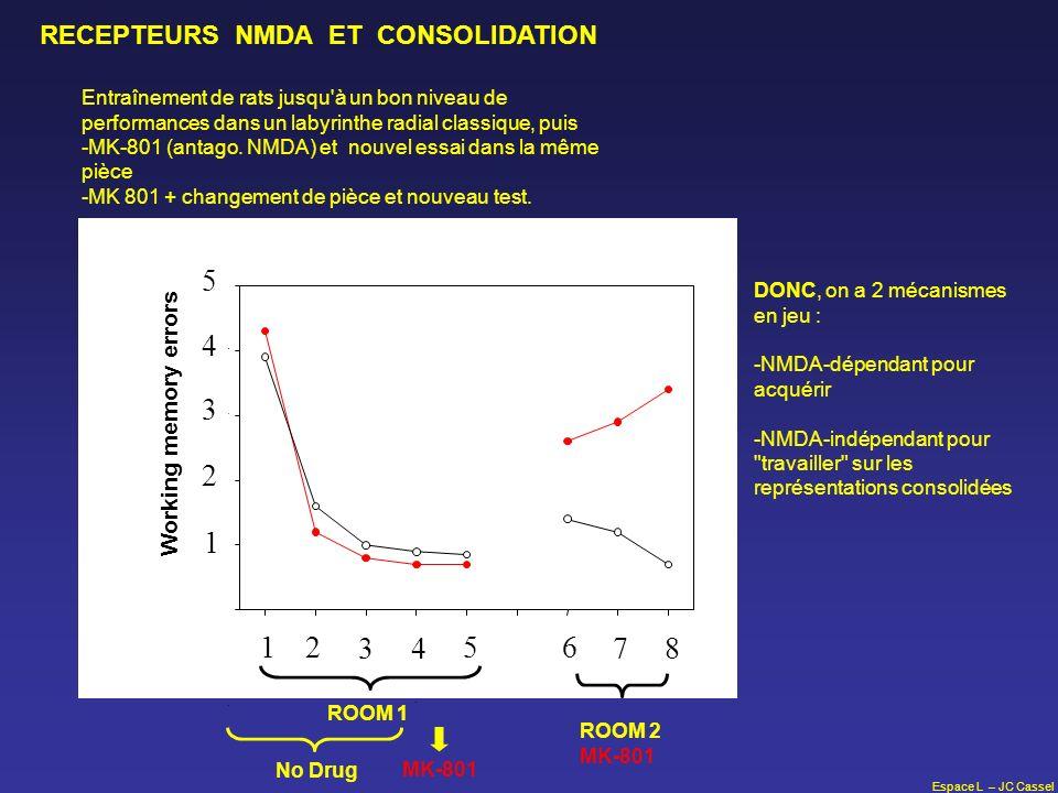 6 7 RECEPTEURS NMDA ET CONSOLIDATION Working memory errors