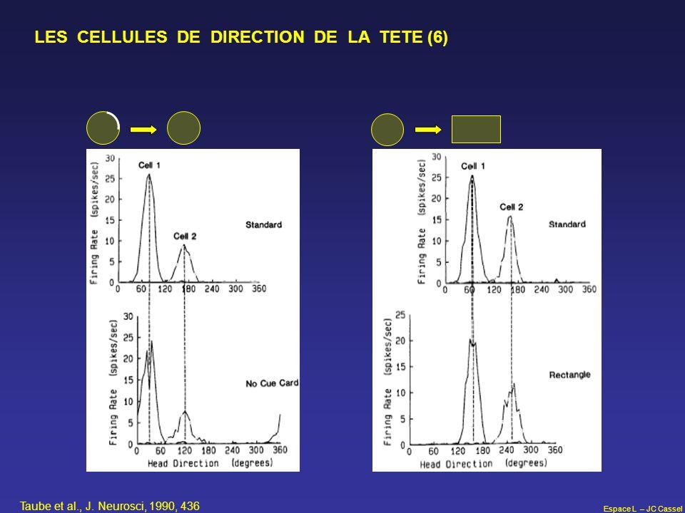 LES CELLULES DE DIRECTION DE LA TETE (6)
