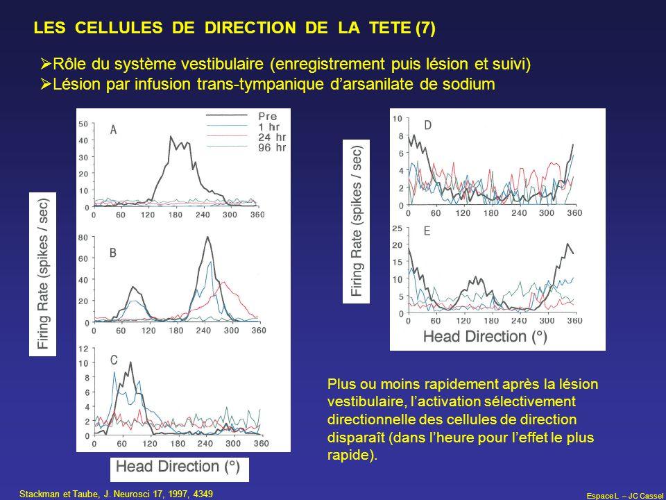 LES CELLULES DE DIRECTION DE LA TETE (7)