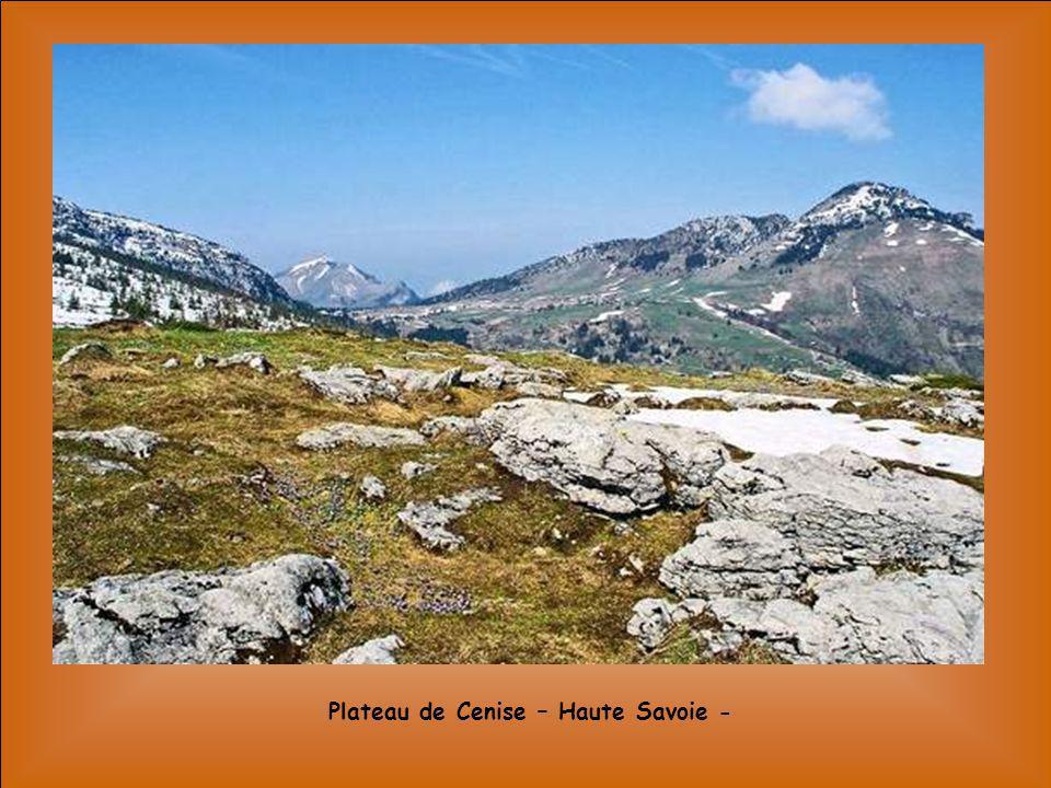 Plateau de Cenise – Haute Savoie -