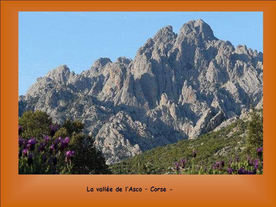 La vallée de l'Asco – Corse -