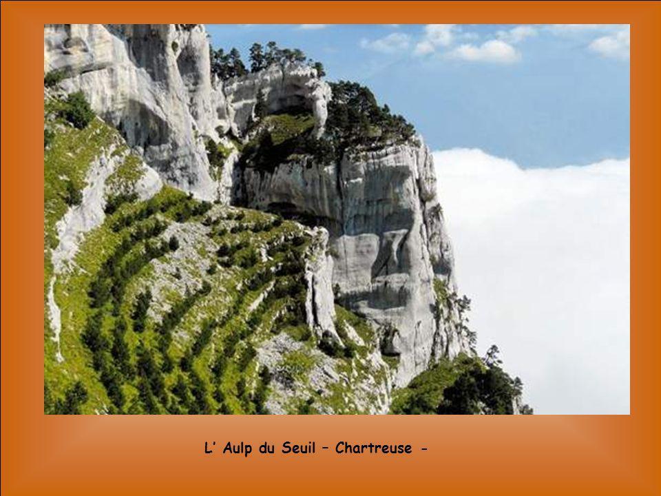 L' Aulp du Seuil – Chartreuse -
