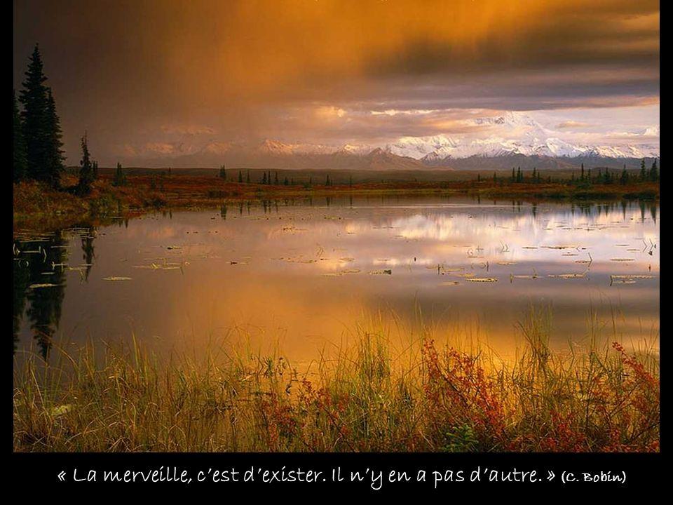 « La merveille, c'est d'exister. Il n'y en a pas d'autre. » (C. Bobin)