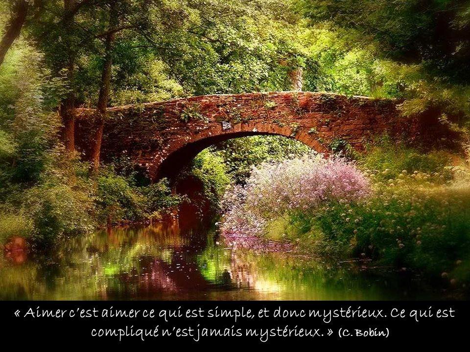 « Aimer c'est aimer ce qui est simple, et donc mystérieux. Ce qui est